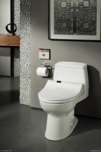 Showcase: TOTO Washlet S300